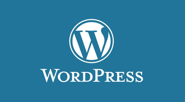 Wordpress plugins that rule